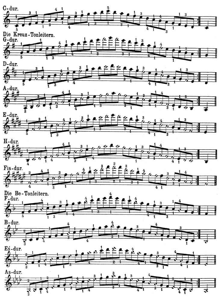 All Music Chords sheet music scale : Zuschneid - scale exercises - piano sheet music download